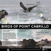 Point Cabrillo Interpretive Panels