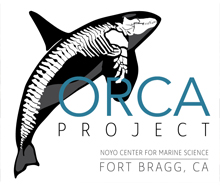 Orca Project Logo